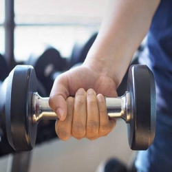 Bars, Dumbbells & Weights